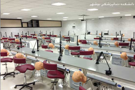 Dental School Bushehr-2||||263||||Gallery universities